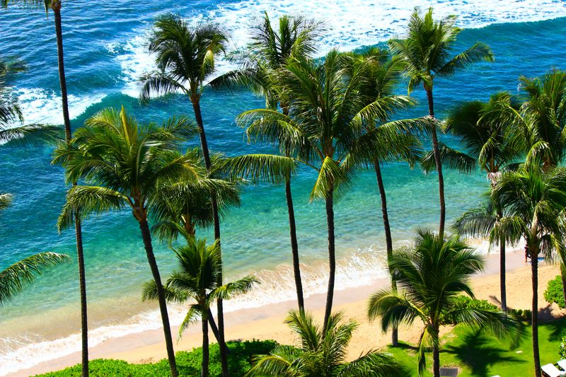 Best Island To Visit In Hawaii For The First Time